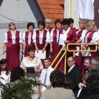 Galéria - Iskolánk névadó ünnepsége 2010.06.05