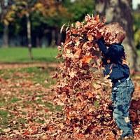 5+1 ötlet az őszi szünetre