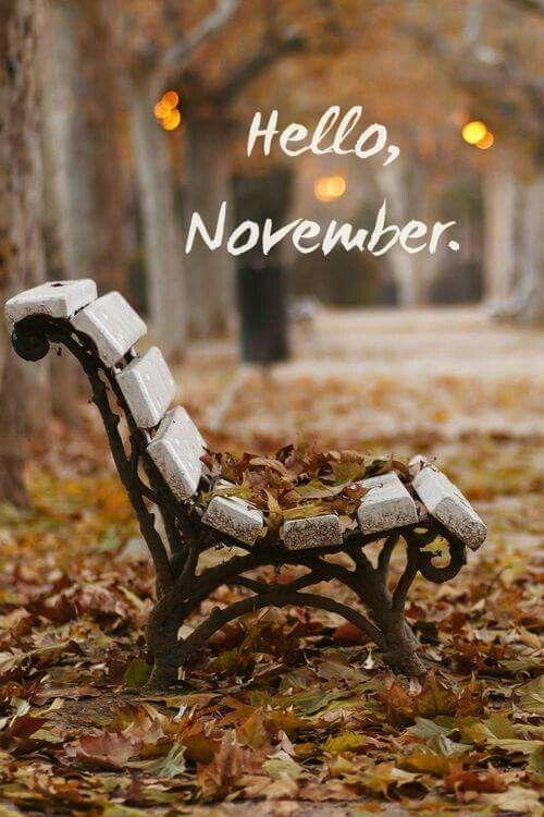 hello_november.jpg