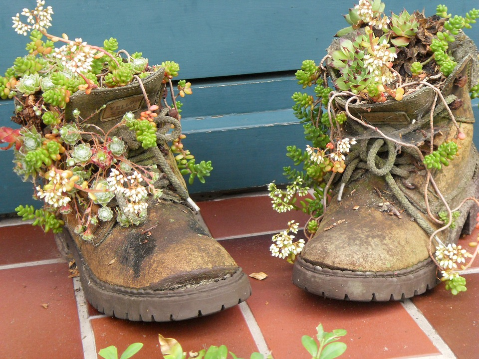 shoes-726070_960_720.jpg