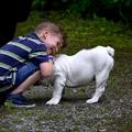 Kisgyerek és kutya itthon és külföldön