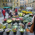 Provence-i pillanatkép