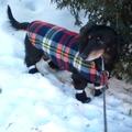 Felkészülés a kanadai télre