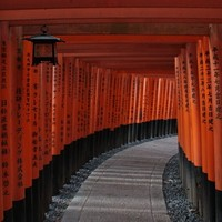 Japán színe és fonákja