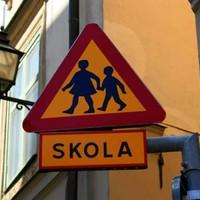 A svéd iskola színe és fonákja