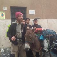 Szamárral Róma felé