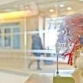 Babysitterből neurológus Svájcban