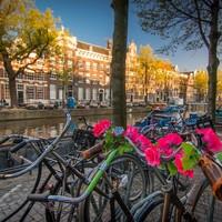 Hollandia előnyei és hátrányai