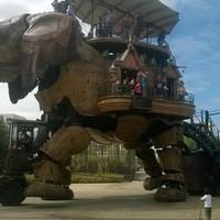 Ilyen elefánt márpedig nincs is!