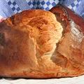 Óda a kenyérről – Magyarországtól Amerikáig