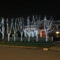 Karácsony a pálmafák és villogó rénszarvas árnyékában