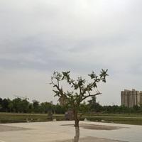 Öt év Kínában