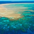 A Nagy-korallzátony: mint egy álomban