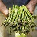 Mi ér többet: a kelet-európaiak egészsége vagy a nyugat-európai élelmiszerellátás?