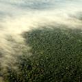Lángoló Amazonas