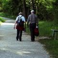 Ki kaphat osztrák nyugdíjat?