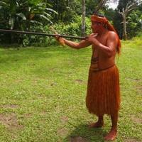 A dzsungelszörny és az arcátlan törzsfőnök