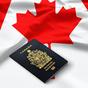 Kanada hat új programmal vár