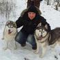 Kutyaszánon az Északi-sarkkörre