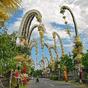 Húsz pontban Baliról magyar szemmel