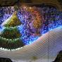Törökös karácsonyi készülődés