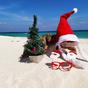 Egzotikus magyar karácsonyok a világ körül