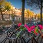 Baleset, kórház és lábadozás Hollandiában