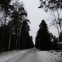 Tíz utálatos dolog Finnországban