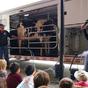 Csaliautó és iskolai tehenek Kanadában