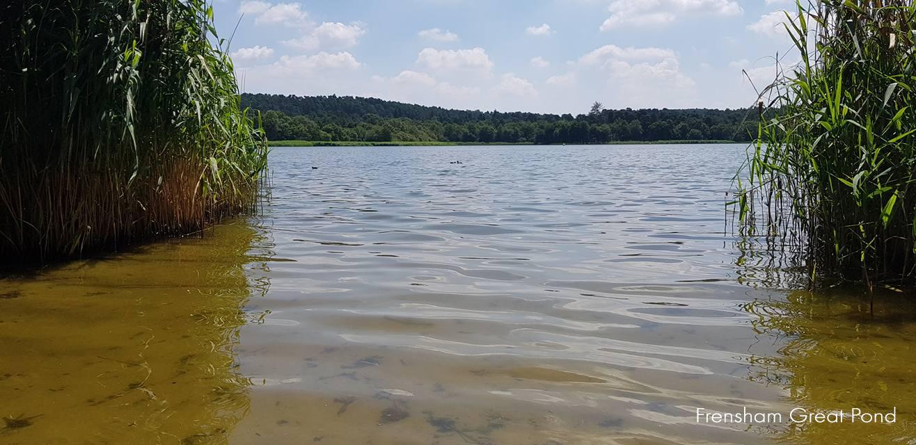 029_frensham_great_pond.jpg