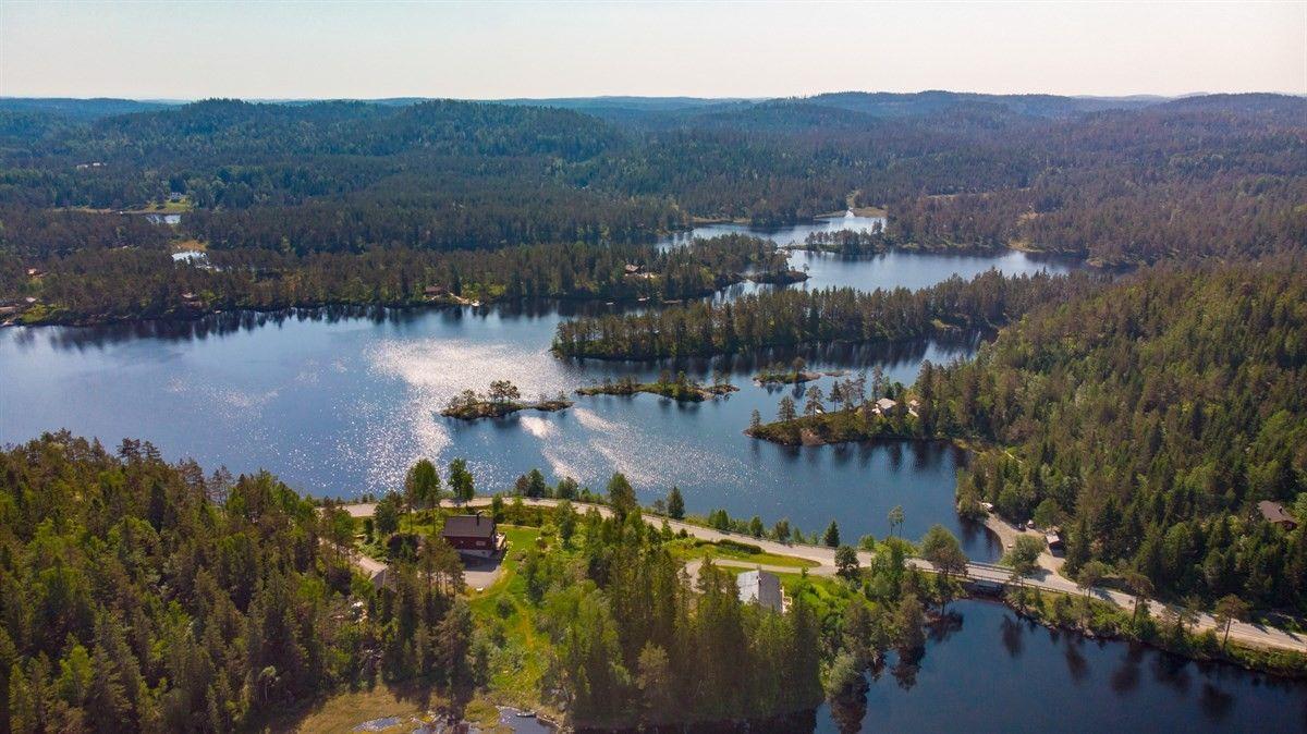 Ez nagy eséllyel belsőbb terület - nem emlékszem - erdők és tavak/folyók mindenfelé
