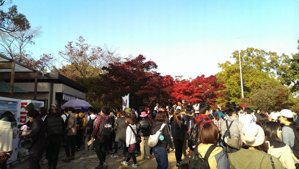 a_takao_hegyen.jpg