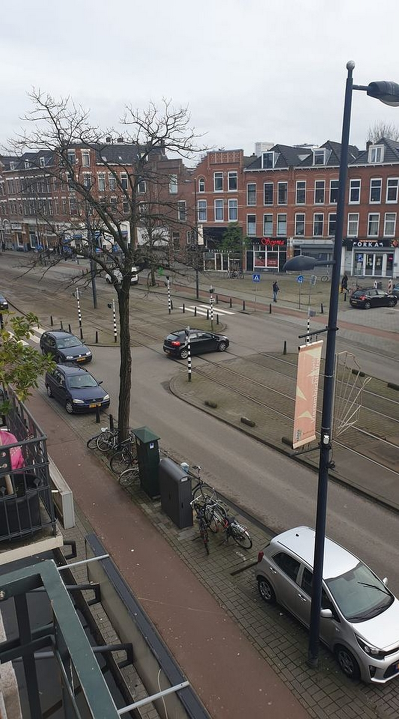 hollandia_rotterdam_zsuzsanna.jpg