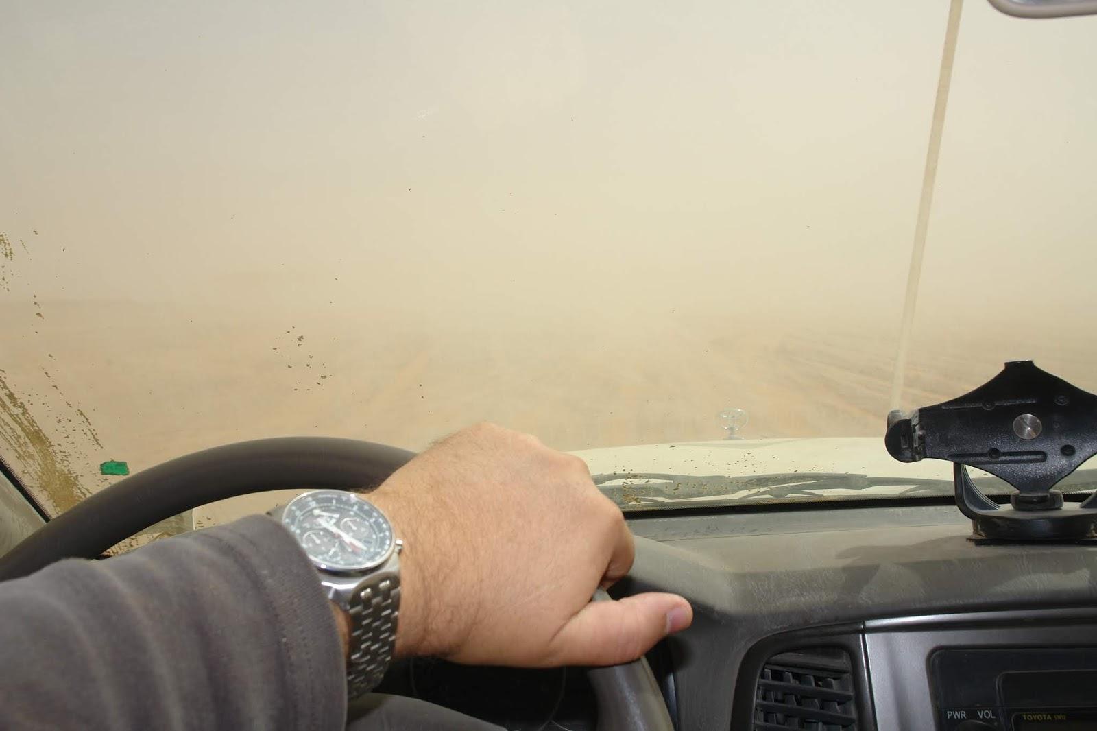 homokvihar.JPG