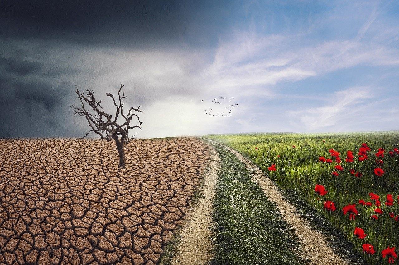 klimavaltozas_2.jpg
