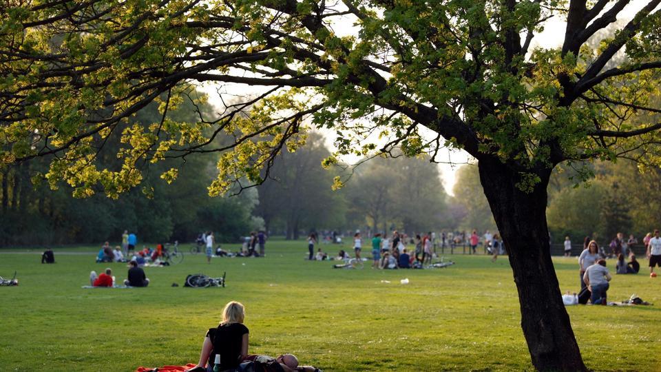 nemetorszag_berlin_park.jpg