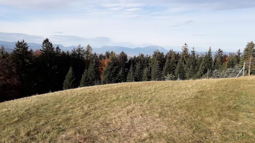 schneeberg.jpeg