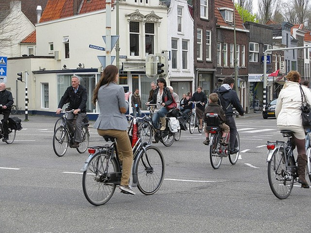 Hollandia bringások.jpg