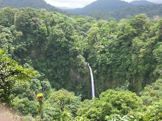 erdő vízeséssel.jpg