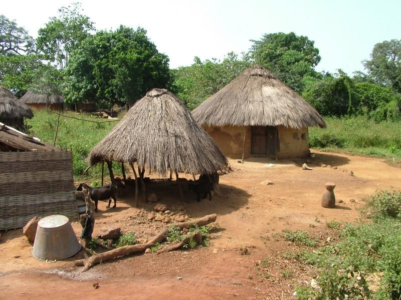guineai_falu.jpg