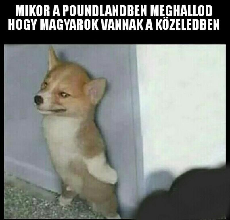 magyarok_2.JPG