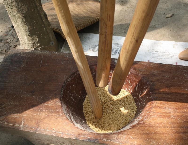"""Az első lépés a rizs hántolása, amikor a rizsszemeket elválasztják a héjától. Az erre kialakított fából készült kúp alakú teknőbe öntik a rizst, majd folyamatos, erős mozdulatokkal, addig """"ütik"""", amíg elválik héjától."""