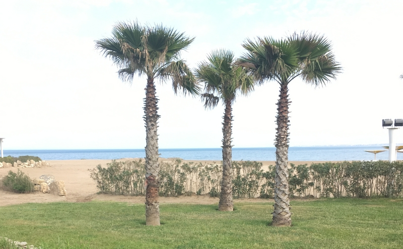 tengerpart_19.jpg