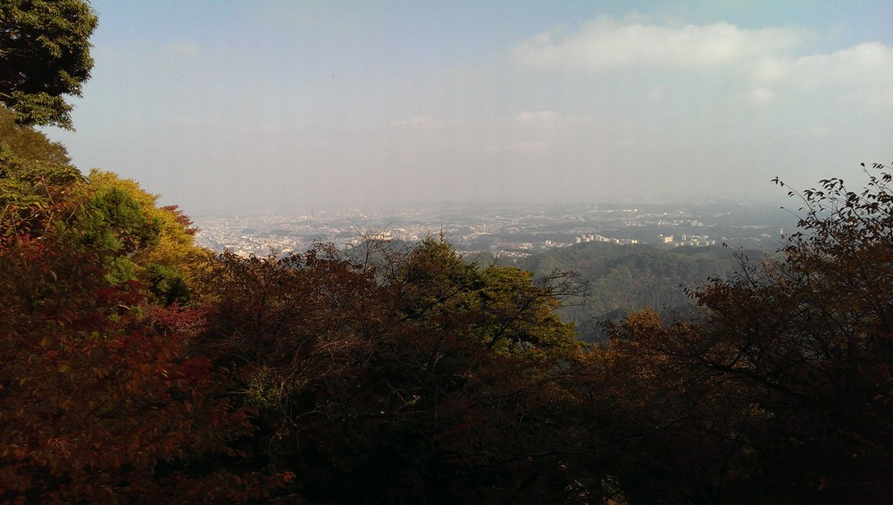 view_of_tokyo_from_mt_takao.jpg