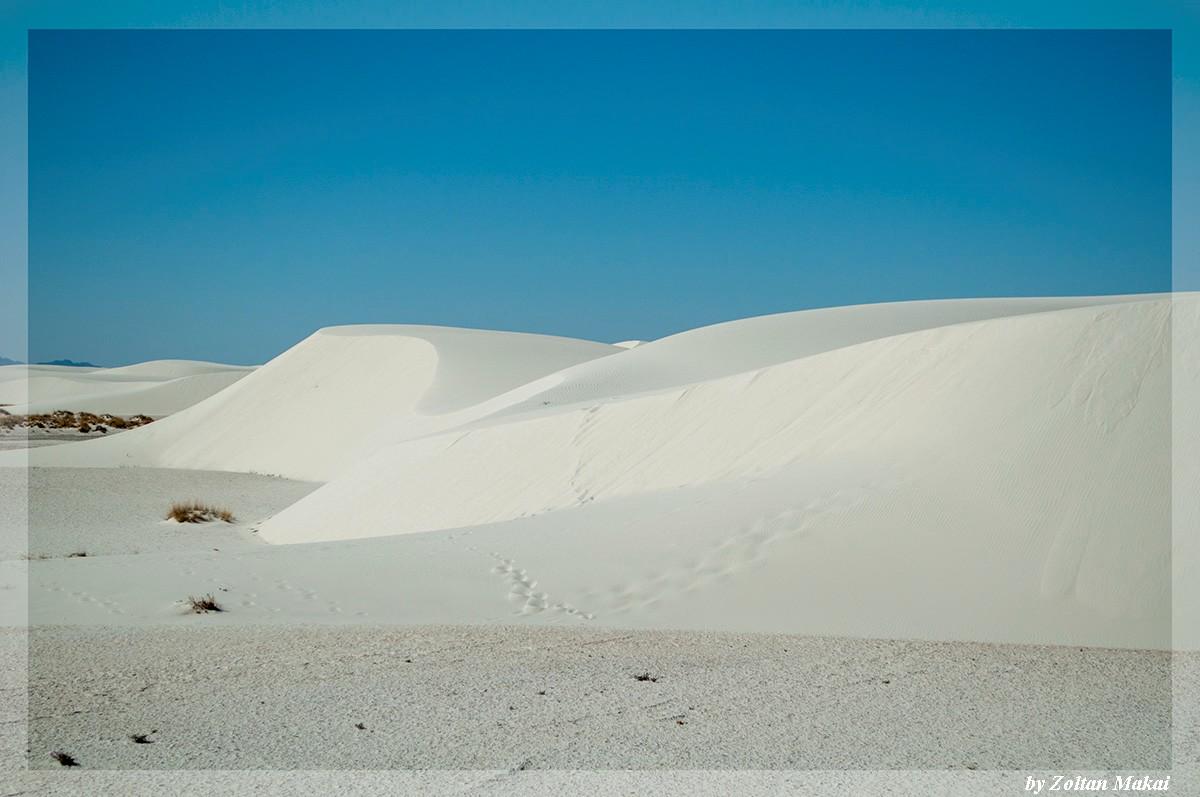 white_sand_6.jpg