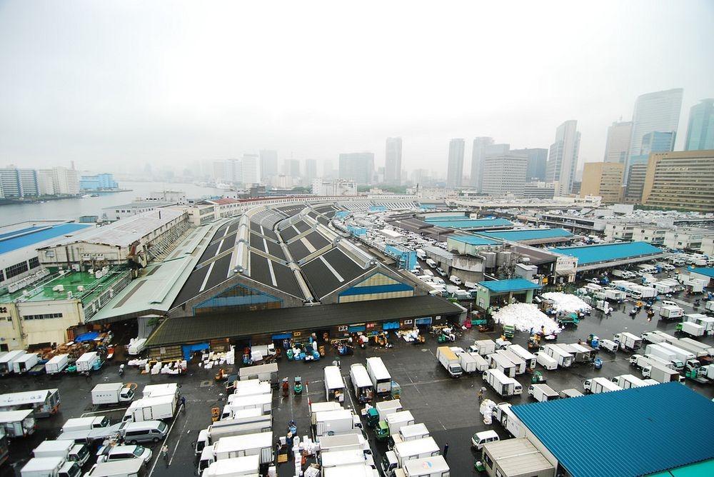 tsukiji-fish-market-46.jpg