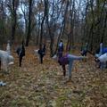 Környezetvédelem, idő és a jóga