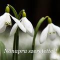 Március 8.: nemzetközi nőnap