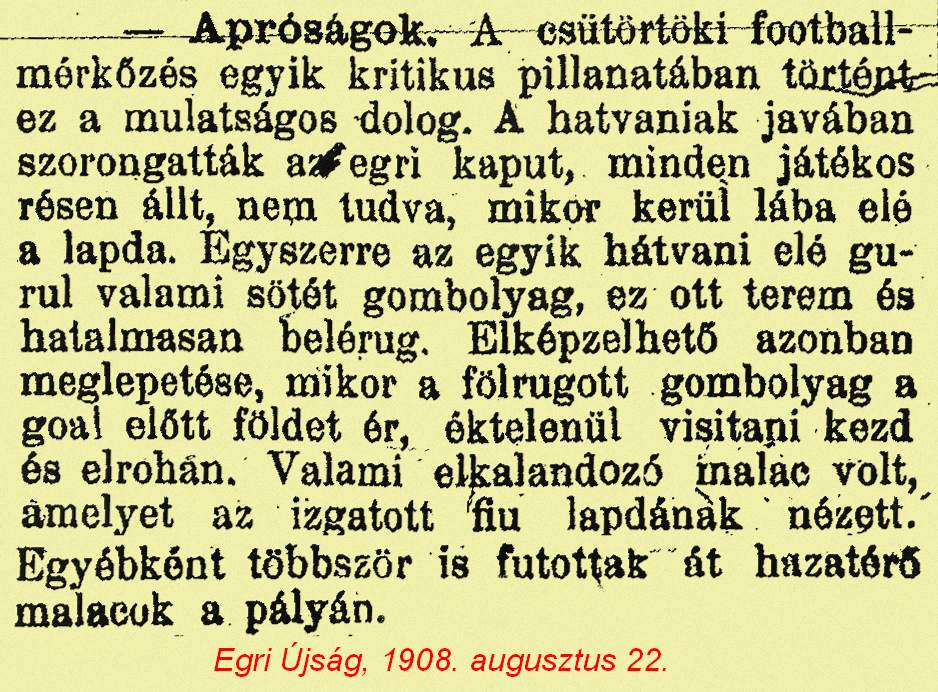 EgriÚjság_1908.08.22. 02 malac.jpg