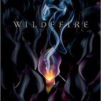 :HOT: Wildefire. Bogdanka Collabs Llantas scripts modern